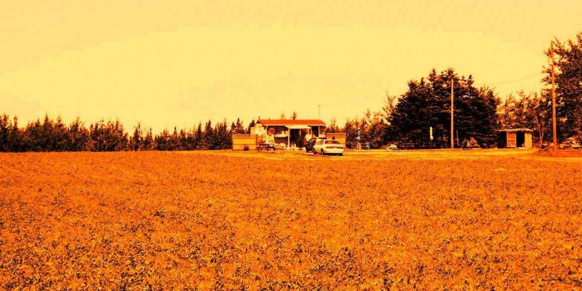 remote ramshackle house with car parked in front surrounded by fields