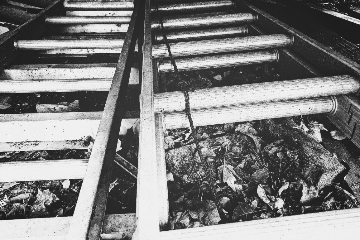 two aluminum extension ladders side by side on ground covered in dead leaves