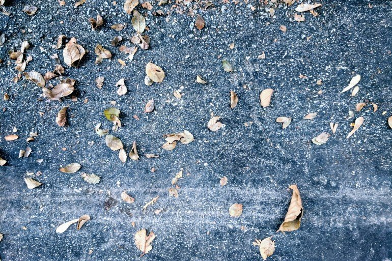 dry dead leaves on pavement