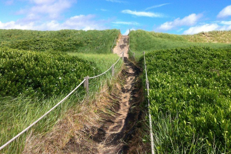 roped pathway through grasses in Prince Edward Island