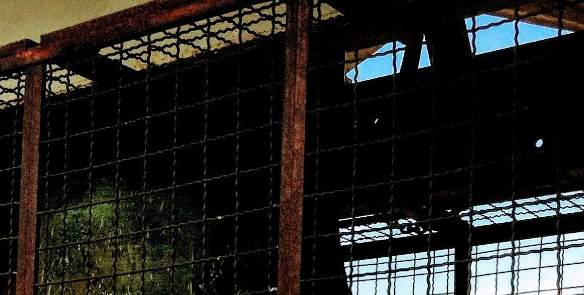dark and foreboding large steel cage in warehouse
