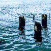 six posts in water where missing pier used to be