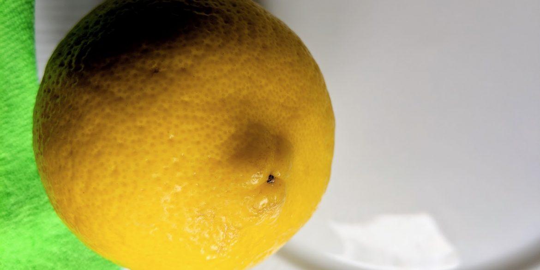 whole yellow lemon on a white china plate