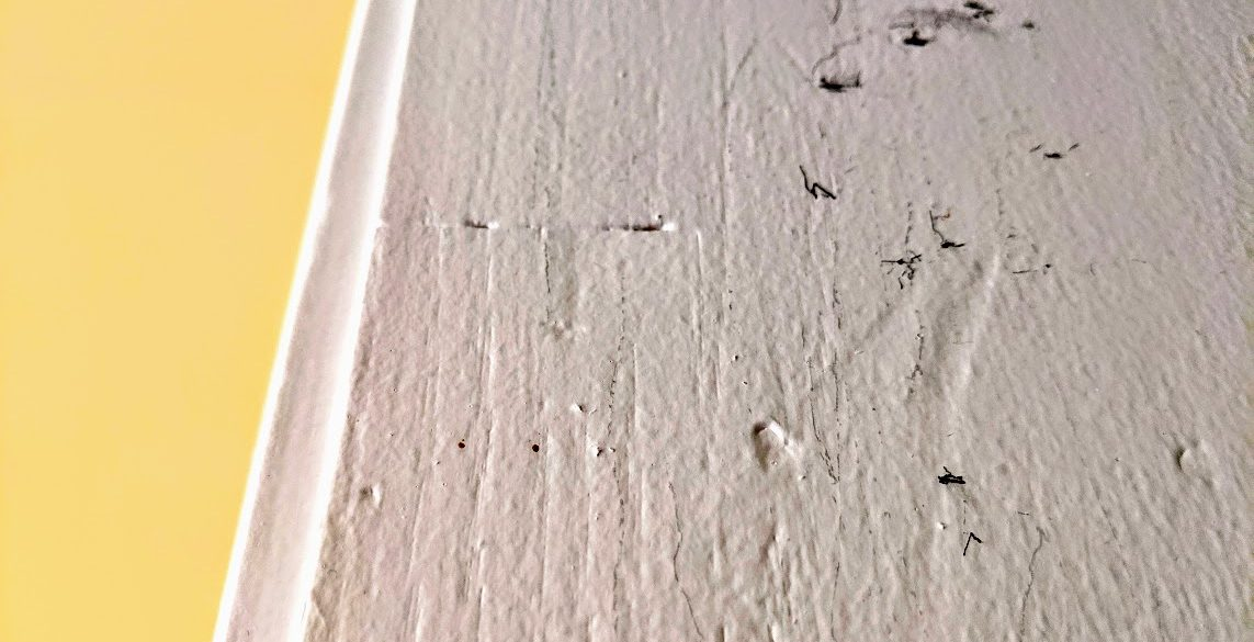 pencil marks on wall track growth