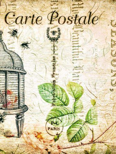 vintage postcard shows old beehive
