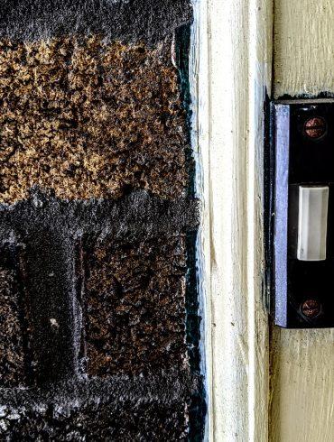 doorbell and brick wall