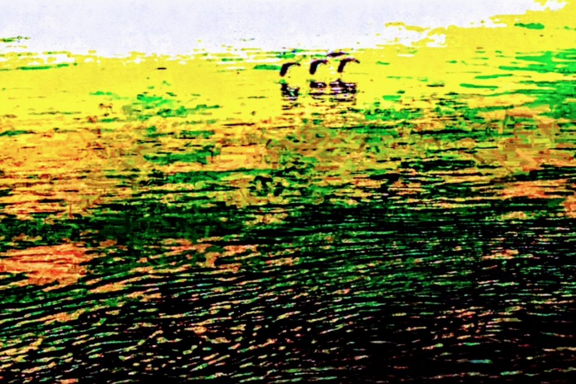 painting of birds flying low across a lake