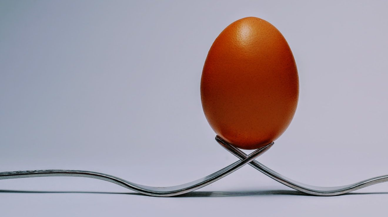 brown egg balancing on tto forks